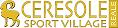 sport village logo
